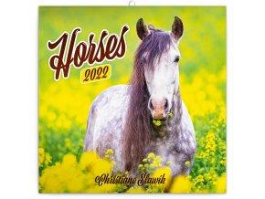 poznamkovy kalendar kone christiane slawik 2022 30 30 cm 900242 31