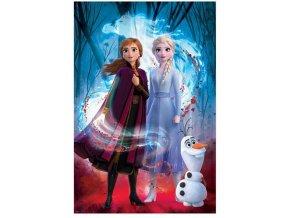 Plakát Ledové království 2 - Guided Spirit