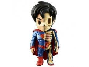 superman xray