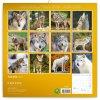 poznamkovy kalendar vlci 2022 30 30 cm 828514 31