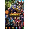 plakát avengers infinity war characters