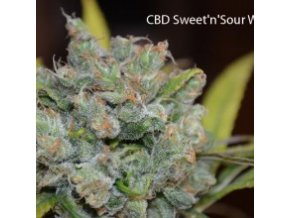 CBD Sweet and Sour Widow 5ks Reguler