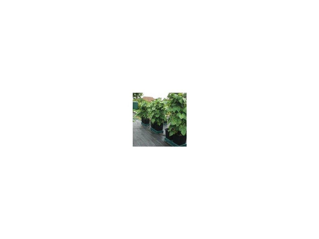 Autopot Easy2grow Kit se 12 květináči, bez Flexitank