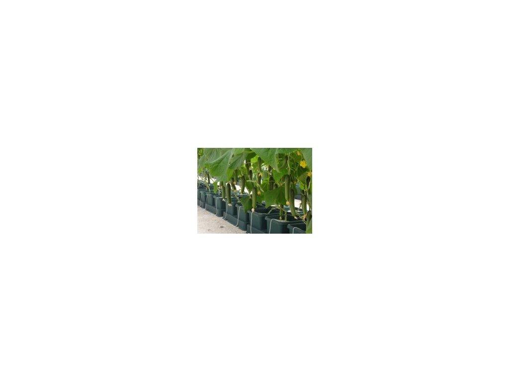 Autopot Easy2grow Kit se 60 květináči, bez Flexitank