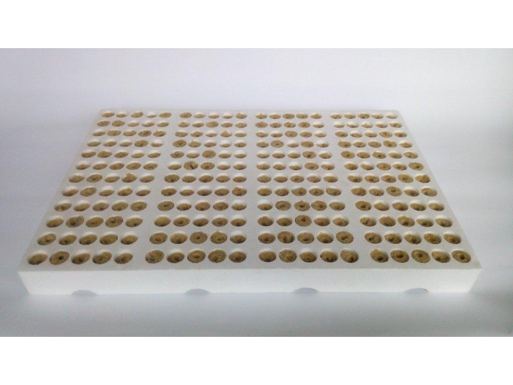 Bomat Multiplato polystyren se sadbovými válečky 23x25 mm, 240 ks