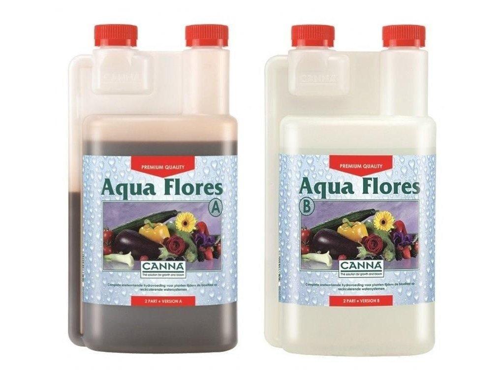 19179 1 canna aqua flores a b 1l