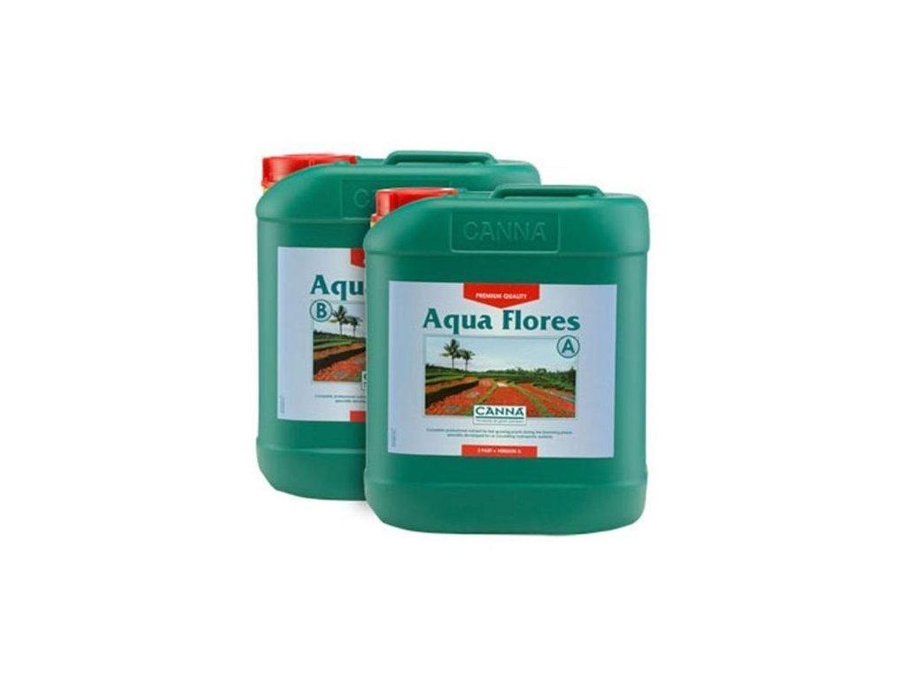 19180 1 canna aqua flores a b 5l z1