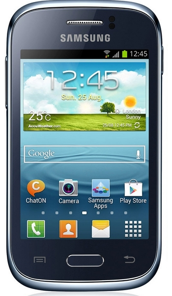 Samsung S6310 Young