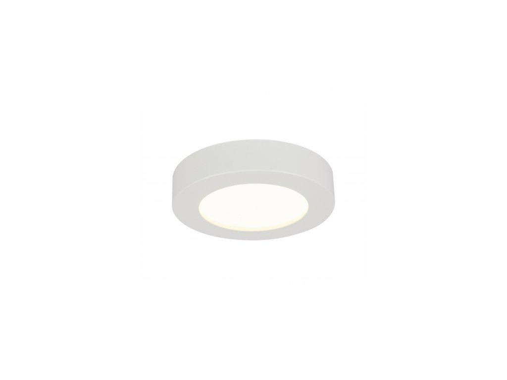 Stropní svítidlo PAULA 41605-20D