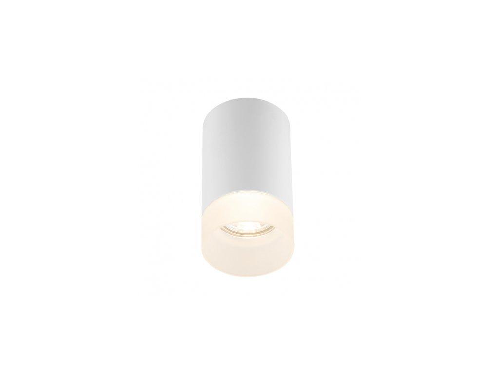 Stropní svítidlo JENNY 12017W