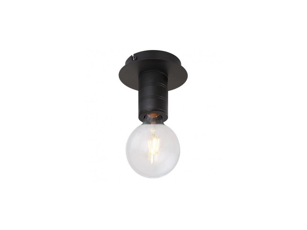 Stropní svítidlo HERMINE 54030-1D