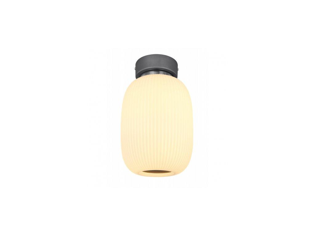 Stropní svítidlo BOOMER 15437D1