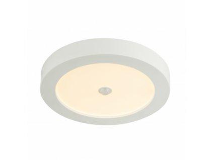Stropní svítidlo PAULA 41605-18S