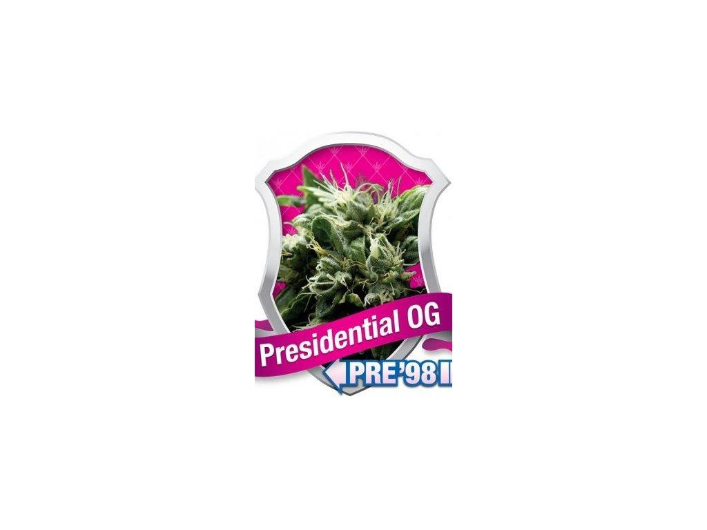 Royal Queen Seeds Presidential O.G., feminizovaná konopná semínka, 5ks