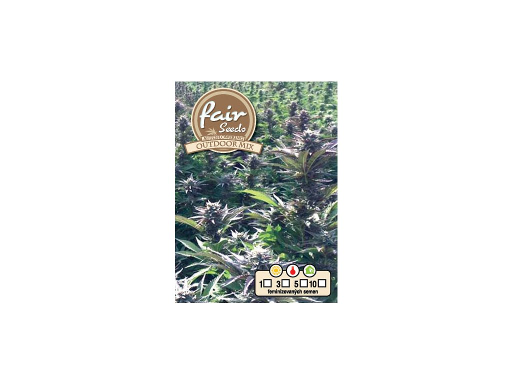 fair seeds AUTO OUTDOOR MIX 2020