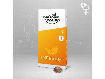 Paradise Seeds CBDenergy, feminizovaná semena konopí, 10ks