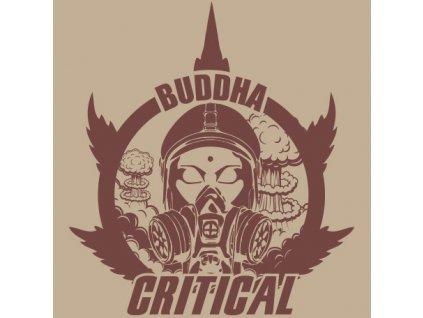 Buddha Seeds Critical, feminizovaná semena marihuany, 10ks