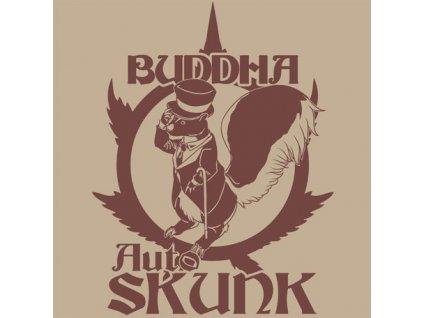 Buddha Seeds Auto Skunk, feminizovaná semena marihuany, samonakvétací, 10ks