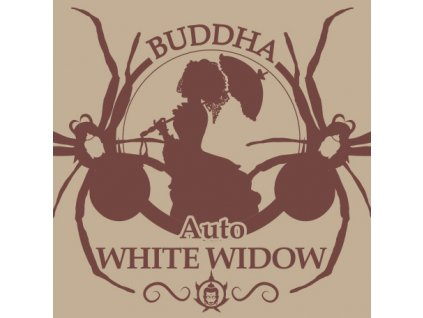 Buddha Seeds Auto White Widow, feminizovaná semena marihuany, samonakvétací, 3ks