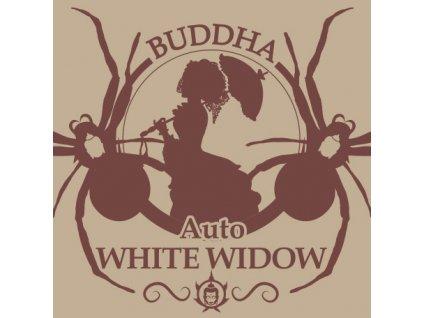 Buddha Seeds Auto White Widow, feminizovaná semena marihuany, samonakvétací, 10ks