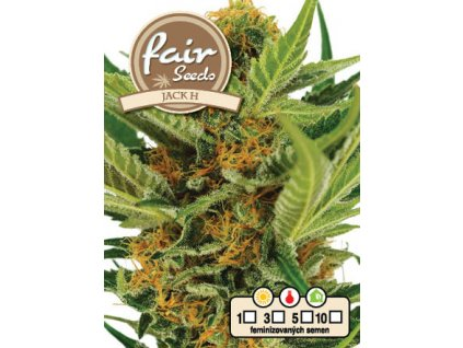 fair seeds JACK H 2020