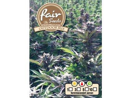 fair seeds AUTO OUTDOOR MIX 2020