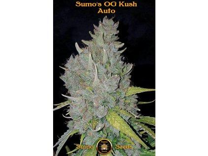 Sumo Seeds Sumo's OG Kush Auto, feminizovaná semena marihuany, samonakvétací, 3ks