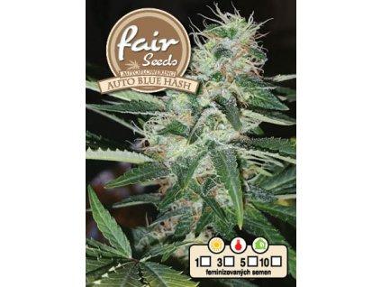fair seeds AUTO BLUE HASH 2020