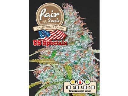 fair seeds AUTO CALIFORNIA SNOW US 2020