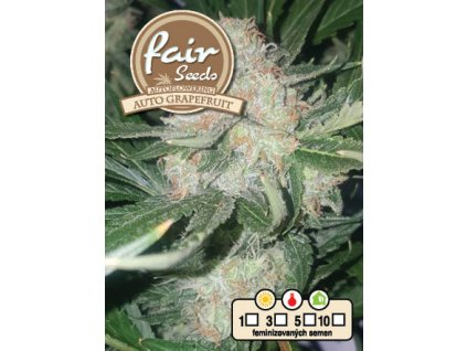 fair seeds AUTO GRAPEFRUIT 2020