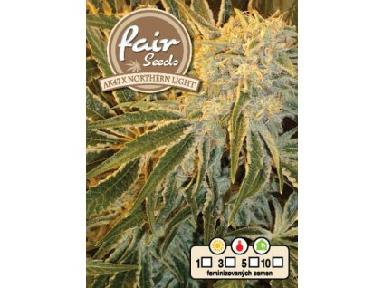fair seeds AK47xNORTHERN LIGHT 2020