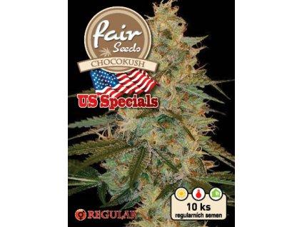 fair seeds CHOCOKUSH US REGULAR 2020