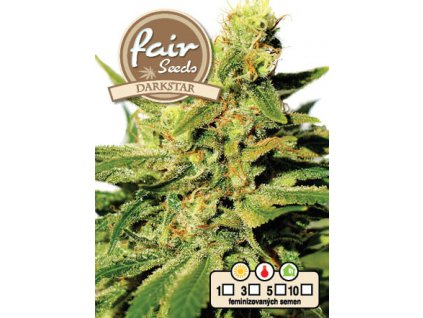 fair seeds DARKSTAR 2020