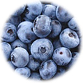 Bluberry extract K