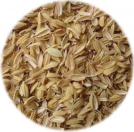 Rice Pula K