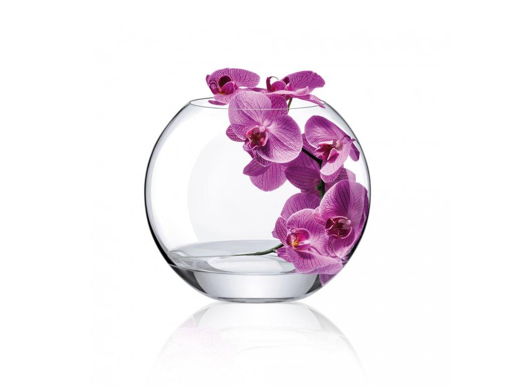 váza 5003 240 orch.fial .
