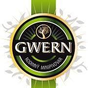 Gwern E-shop