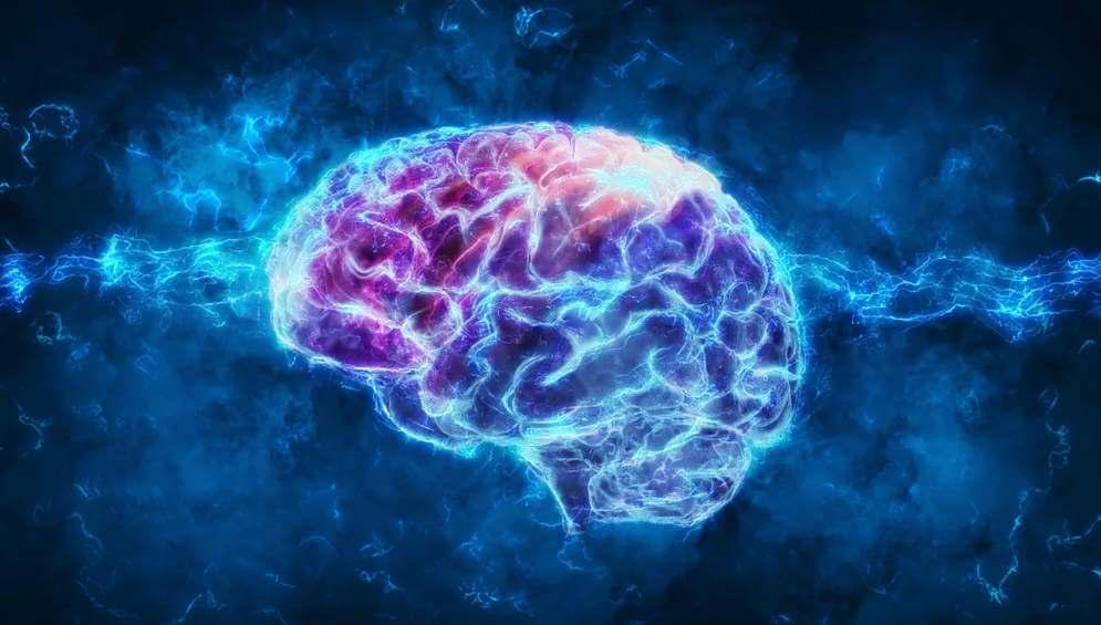 Nejlepší výživa pro mozek a soustředění
