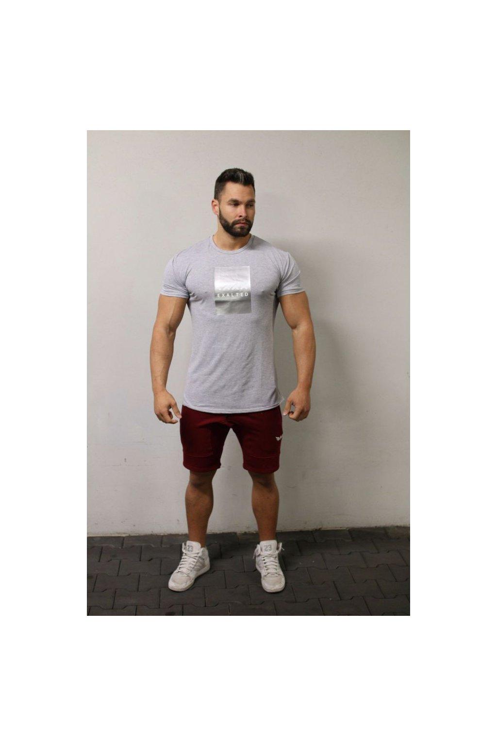 Pánské tričko Exalted E1- Šedé