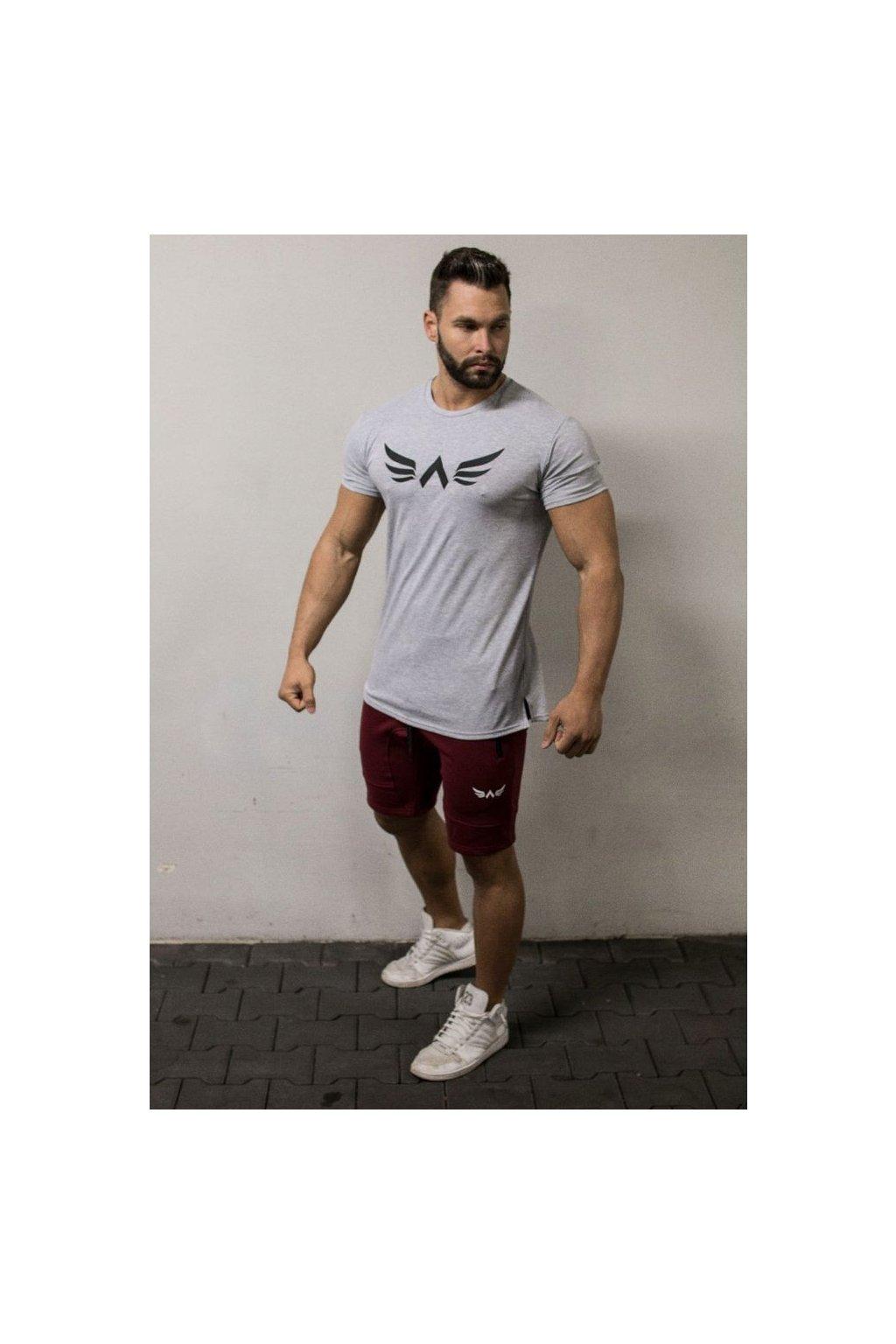 Pánské tričko Exalted X1 - Šedé
