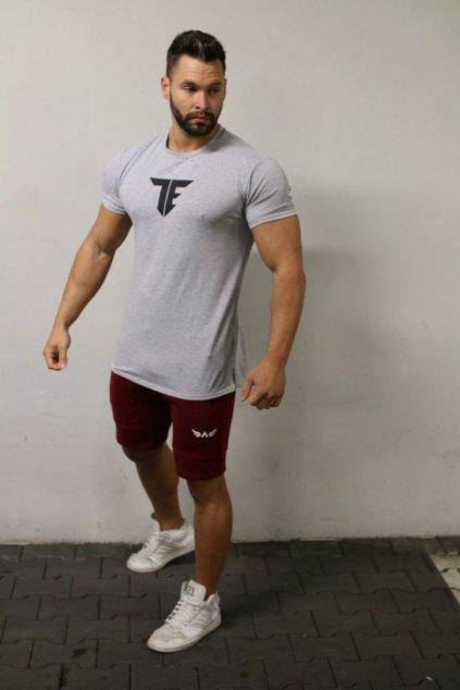 Pánské tričko Exalted T1 - Šedé