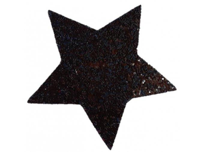 Hvězda do vlasů černá