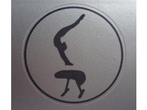 Nálepka stříbrná mini5