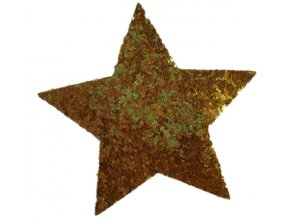 Hvězda do vlasů zlatá