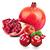 brusinka - granátové jablko