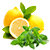 citron - máta