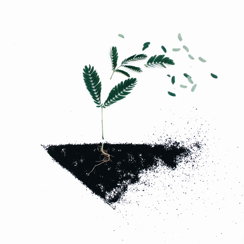 HA-NA-MI a ekologie