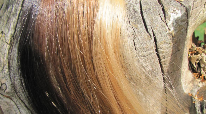 Jak přejít z chemické barvy na přírodní