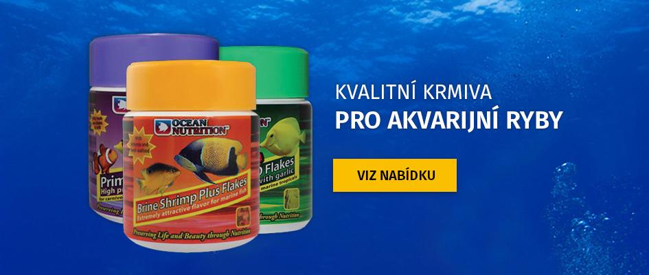 Krmiva pro akvarijní ryby