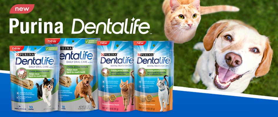 Prohlédněte si NOVINKU Dentalife od značky PURINA!